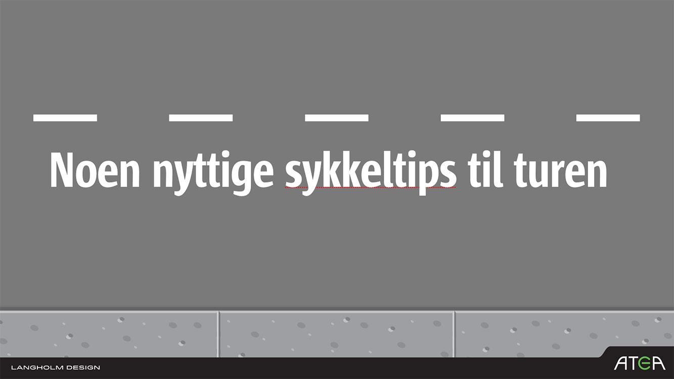LD Sykkel08